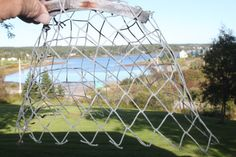 AWESOME LOBSTER TRAP Driftwood hoops with by BEACHGLASSSWEPTASHOR