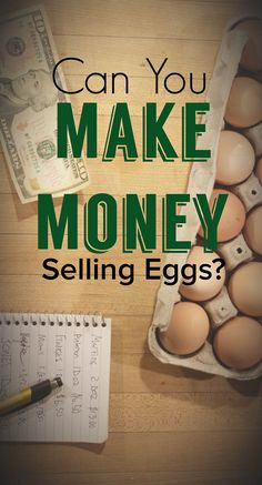 Can you make money selling eggs? Is it a profitable small farm business?