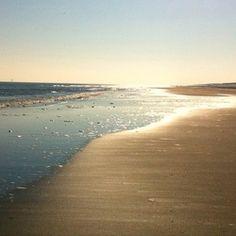 Langs het strand op Ameland