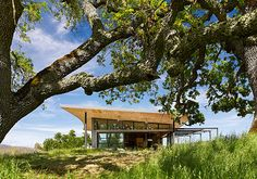 Caterpillar House // Feldman Architecture | Afflante.com