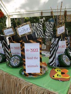 Safari Themed Kids Birthday Party
