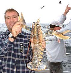 Prize lobster