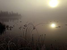 Naturbild med dimma och soluppgång