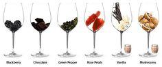 Simple Wine Guide - Merlot