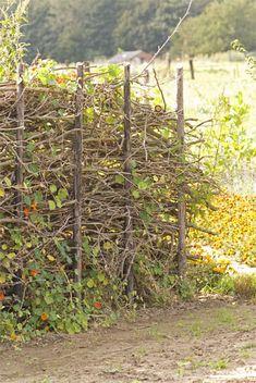 houtwal van snoeiafval dit was voor ons de oplossing ivm jaarlijks terugkomend snoeiafval.Daarbij nestelen er ook nog vogels in.