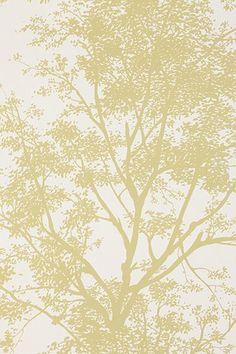 Tree Shadow Wallpaper #Top10UOHome