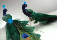 """photo 2 of 4 A majestic accent for your wedding birdcages, this pair of peacocks comes with natural peacock feather tails. They are 8"""" long and have wired legs to stand or perch. The real peacock feathers add a whimsical and lush touch of color to your décor."""