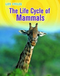 Life Cycle of Mammals (Life Cycles) - http://www.bestchildrenbook.com/life-cycle-of-mammals-life-cycles/