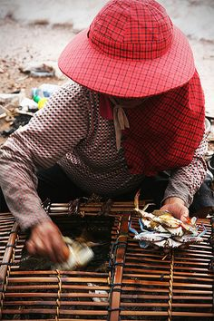 Crab basket . Cambodia
