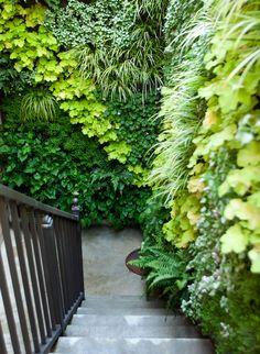Jardín vertical en zona de ingreso