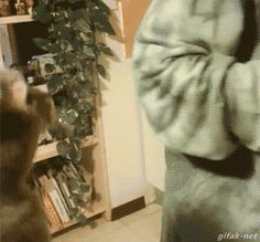 Just hug me!