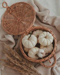 Halloween Art, Vintage Halloween, Seasonal Decor, Fall Decor, Autumn Flatlay, Fall Scents, Fall Candles, Autumn Inspiration, Tis The Season