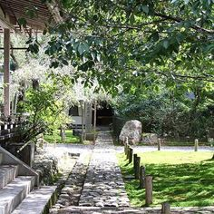 【keihoku_sanpo】さんのInstagramをピンしています。 《常照皇寺は、光厳天皇によって貞治元年(1362年)に開かれ、歴代天皇の帰依を得た皇室ゆかりの寺であり、臨済宗天龍寺派に属する寺院です。 ・ 天然記念物である「九重桜」をはじめ、御所から株分けしたといわれる「左近の桜」、一重と八重が一枝に咲く「御車返しの桜」など桜の名木があり、観桜期には大変な賑わいを見せます。  #四季 #桜 #しだれ桜 #庭 #常照皇寺 #寺 #寺院 #観光 #京都観光 #北山杉  #緑 #木立 #古都 #建築  #京北 #京北町 #京都 #日本 #原風景 #田舎道 #自然 #山 #北山杉 #kyoto #japan #nature #写真好きな人と繋がりたい #写真を撮る人と繋がりたい #もみじ #緑 #みどり》