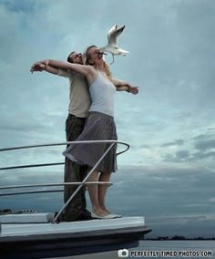 Not the King of the World! from Perfectly Timed Photos