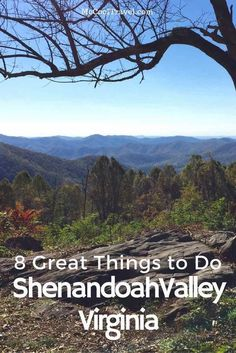 Shenandoah Valley, Virginia is an area of astounding natural beauty and amazing history. Here are 8 great things to do in Shenandoah Valley.