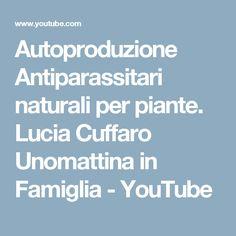 Autoproduzione Antiparassitari naturali per piante. Lucia Cuffaro Unomattina in Famiglia - YouTube
