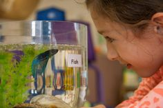 Pets in the preschool classroom - check out 2 grant programs for teachers to use to bring a pet into their classroom
