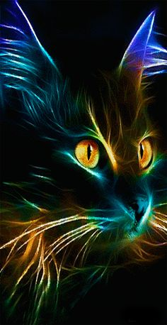 48217229 The CATalogues (With images) Cat Wallpaper, Animal Wallpaper, Beautiful Fantasy Art, Beautiful Cats, Neon Cat, Warrior Cats Art, Cute Animal Drawings, Cat Colors, Cat Drawing