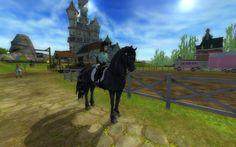 Friesen sport paard