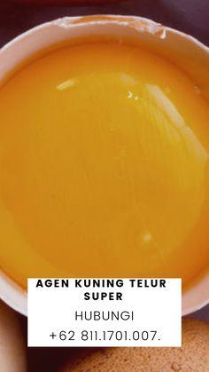 READY STOK!!! WA +62 822.1919.9897, Distributor Kuning Telur Mentah Kiloan Putih Telur Untuk Kebutuhan Anda, Bisa COD, Ambil Di tempat, atau Kirim Via Kurir Ojek Online, Ready Stok, Untuk Informasi lebih Lanjut Silahkan Hubungi Kami di+62 813.8008.5544 | Khaya. Atau Bisa Langsung Ke Alamat Kami Di Jalan Jaya Kusuma 1 No 06, RT 07/RW 01, Kp Makasar, Jakarta Timur 13570, Jakarta. JDistributor Kuning Telur Untuk Kue Kering Jakarta Selatan, Distributor Kuning Telur Untuk Nastar Jakarta Selatan