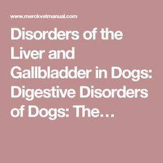 Disorders of the Liver and Gallbladder in Dogs: Digestive Disorders of Dogs: The…