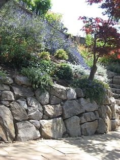 Like this dry stack Dry Stack Stone, Stacked Stone Walls, Backyard Retaining Walls, Stone Retaining Wall, Waterfall Features, Hillside House, Hillside Landscaping, Stone Masonry, Modern Fence