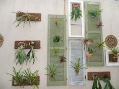 Different yet functional. I'd use frames of paintings in between the plants to have a more organic me look.