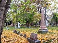 Sweeney Cemetery, Payne across from City Hall, c.1868. A cool historic cemetery to visit around Halloween!