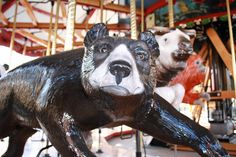 New Speedwell Family carousel at National Zoo, featuring endangered animals