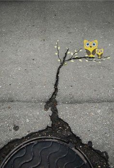 Owl on the street Tunnel #streetart