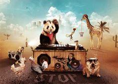 El baile del oso...