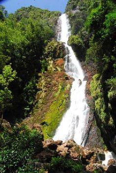 Montezuma Falls, Tasmania: See 47 reviews, articles, and 37 photos of Montezuma Falls, ranked No.197 on TripAdvisor among 684 attractions in Tasmania.