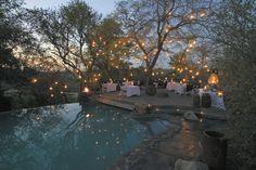 BEAUTIFUL twinkly back yard