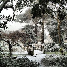 York House Gardens In Twickenham