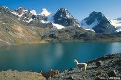 Lac Titicaca Copacabana 560587