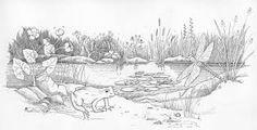 Pond Drawing Pencil Google Search Vol 1 Landscape