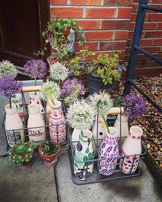 Milk bottle Monday! #emmabridgewater #love #milkbottle #allium #sedum Painted Pavers, Emma Bridgewater Pottery, Emma Love, Pottery Painting, Bottle Crafts, Tea Party, Diy And Crafts, My Favorite Things, Manualidades