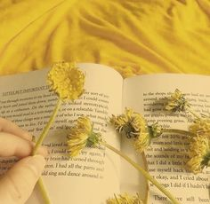 Yellow Aesthetic Pastel, Orange Aesthetic, Aesthetic Colors, Book Aesthetic, Aesthetic Vintage, Aesthetic Photo, Aesthetic Pictures, Aesthetic Backgrounds, Aesthetic Iphone Wallpaper