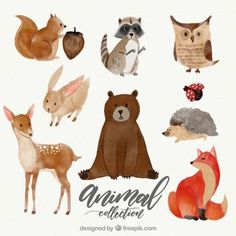 Watercolor set of lovely animals Watercolor Kit, Watercolor Painting Techniques, Watercolor Animals, Watercolor Illustration, Floral Watercolor, Cute Animal Illustration, Watercolor Artists, Painting Lessons, Forest Animals