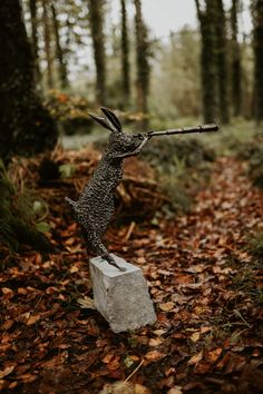 Inquisitive Hare - (Steel) | Kilbaha Gallery | Ireland's Contemporary Art Gallery | Loop Head