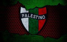 Download wallpapers Palestino, 4k, logo, Chilean Primera Division, soccer, football club, Chile, grunge, metal texture, Palestino FC