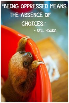 """Anti-Oppressive Baby Animals and Bell Hooks. """"BEING OPPRESSED MEANS THE ABSENCE OF CHOICES."""""""
