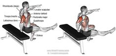 One arm bench dip. An advanced compound arm and leg exercise. Target muscles: Triceps Brachii, Gluteus Maximus, and Quadriceps. Synergistic muscles: Anterior Deltoid, Sternal and Clavicular Pectoralis Major, Pectoralis Minor, Major and Minor Rhomboids, Levator Scapulae, Latissimus Dorsi, Adductor Magnus, and Soleus. Visit site to learn how to perform this exercise properly.