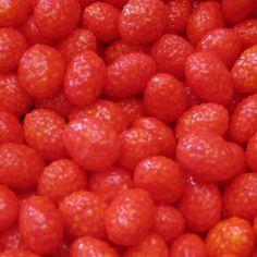 Les Fraisettes, fraises des bois