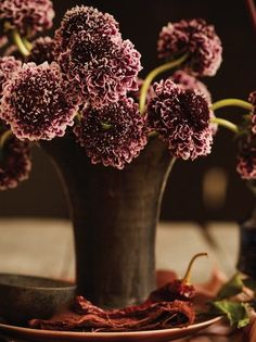 Deep Purple, Blackberry, and Aubergine flowers