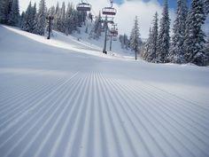 Jahorina mountain, Sarajevo, Bosnia and Hercegovina Sarajevo Bosnia, Snow Conditions, Bosnia And Herzegovina, Skiing, Around The Worlds, Mountains, Lifestyle, Natural, Outdoor