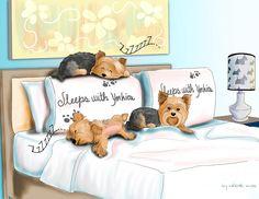 Sleeps With Yorkies Mixed Media  - Sleeps With Yorkies Fine Art Print