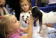 Babies in dog-owning families may be healthier
