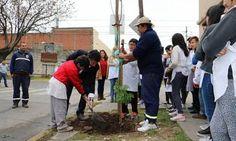 Alumnos plantaron árboles en Boulogne