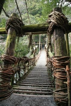 Kazurabashi Bridge, Tokushima, Japan  ....Lies in the remote mountain village in the Iya Valley.  It's made of kewi vines, suspends 15 meters, and is 2 meters wide.  The bridge changes every three years due to its composition.